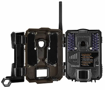 SPYPOINT LINK-EVO-V Cellular Trail Camera review