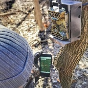 Best 5 4G Game Trail Cameras On The Market In 2020 Reviews