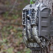 Best 5 Cellular Game Trail Camera For Sale In 2021 Reviews