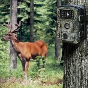Best 5 Cheap & Budget Game Trail Camera Pick In 2021 Reviews