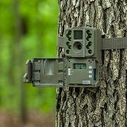 Best 5 Small & Mini Game Trail Camera Picks In 2021 Reviews