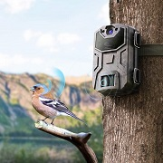 Best 5 Wildlife Cameras Motion Activated In 2020 Reviews
