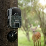 Best 5 Wildlife Game(Trail) & Photography Cameras Reviews