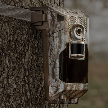 Bushnell Impulse Trail Camera review